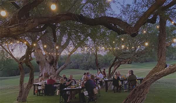 Wedding reception under tree grove